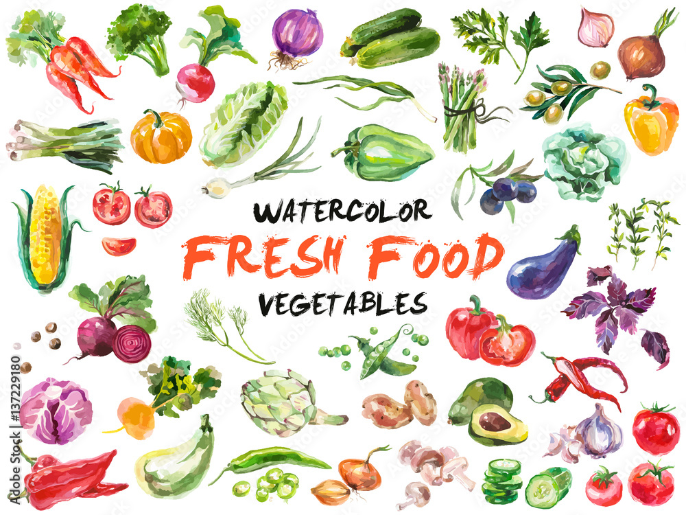 Fototapety, obrazy: Watercolor vegetables isolated on white