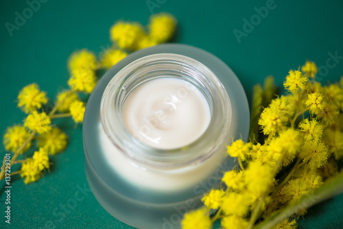 Fotografie, Obraz  Face cream and mimosa flower, green background