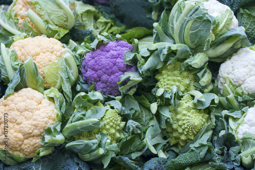 Fotografie, Obraz  Colorful purple, green and yellow cauliflower