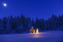 Illuminated Christmas Tree In ...