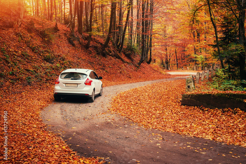 Foto auf Leinwand Rot kubanischen car on a forest path. Autumn Landscape. Ukraine Europe