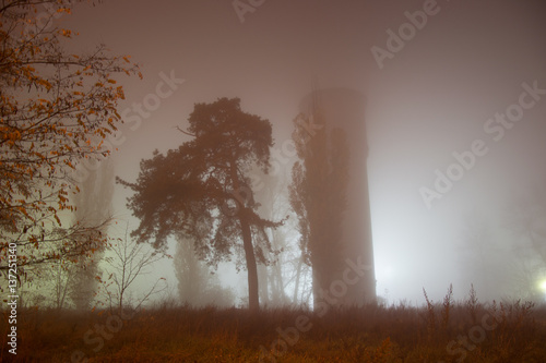 Poster Cerf Water Tower at night in the fog