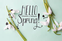 Hello Spring Note With Fresh S...