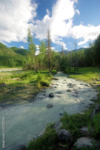 Poster Rivière de la forêt Altay