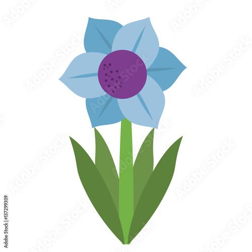 Fotografie, Obraz  mona lisa blue flower natural vector illustration eps 10