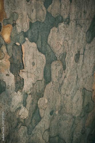 Foto auf AluDibond Alte schmutzig texturierte wand Wooden background