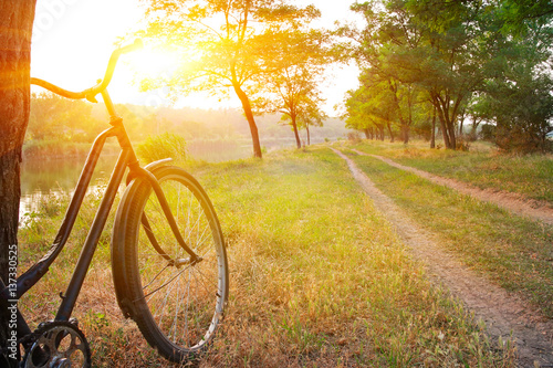 Poster Miel Landscape with bicycle