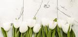 Fototapeta Tulipany - White tulips on wooden background