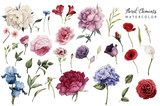 Fototapeta Kwiaty - Flowers and leaves, watercolor, can be used as greeting card, invitation card for wedding, birthday and other holiday and  summer background.