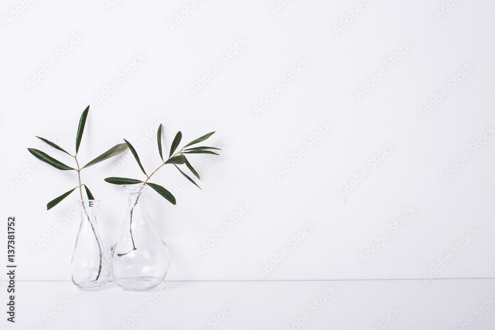 Fototapety, obrazy: Two olive branches in glass bottles