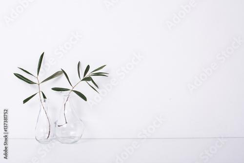 Fotografie, Obraz  Two olive branches in glass bottles