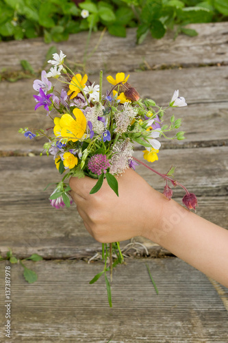 Spoed Foto op Canvas Iris Bouquet of summer wildflowers in hand on a wooden surface background