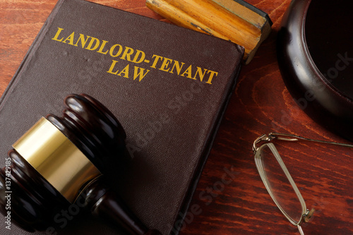 Fotografiet Book with title Landlord-Tenant Law and a gavel.