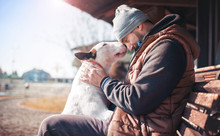 Moments Of Love Between Dog And His Owner. Pets And Animals Concept