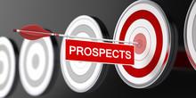 Prospects / Target / 3d