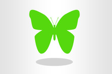 Illustration Of Green Butterfly On Plain Background