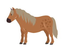 Red Pony Vector Illustration In Flat Design