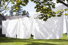White Sheets Drying On A Clothesline Outside; Charelvoix, Quebec, Canada