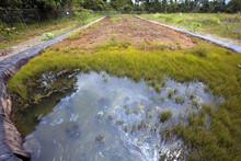 Bioremediation Pit For Soil Co...