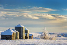 Snow Covered Metal And Wooden Grain Bins With Frosted Trees, Bushes And Stubble With Clouds And Blue Sky; Rosebud, Alberta, Canada