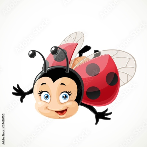 Fototapeta Cute cartoon ladybug fly on a white background