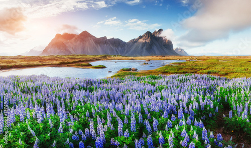 Staande foto Noord Europa Picturesque views of the river and mountains in Iceland
