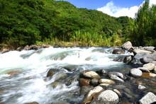 Torrent à Vieux Habitants En Guadeloupe