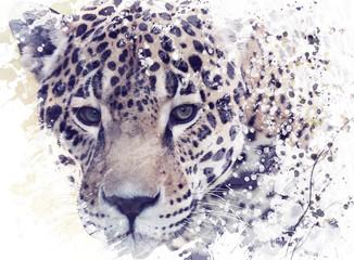 Fototapeta na wymiar Leopard Portrait Watercolor