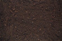 Fertile Soil Texture Background Seen From Above, Top View. Gardening Or Planting Concept With Copy Space. Natural Pattern