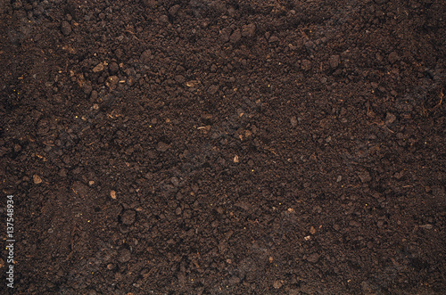Fotografía  Fertile soil texture background seen from above, top view
