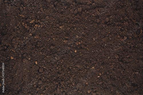 Cuadros en Lienzo  Fertile soil texture background seen from above, top view