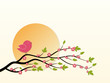 Bird on flowering tree.
