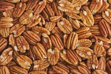 Lots Of Raw Organic Pecan Nuts