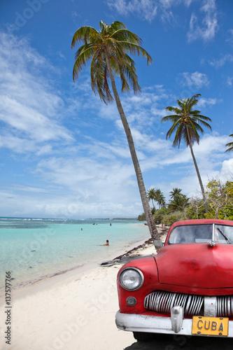 Photo  voiture cubaine sous les cocotiers