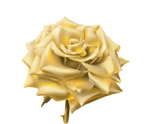 Gold Rose. Hand Drawn Vector Illustration Of An Open Rose With Glowing Petals Made Of Gold, On Transparent Background.