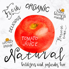 Fototapeta Watercolor tomato