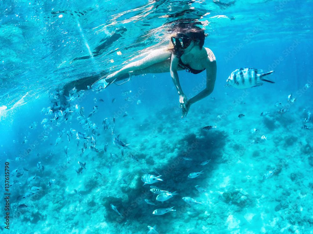 Fototapeta Beautiful woman snorkeling among fishes in blue ocean.