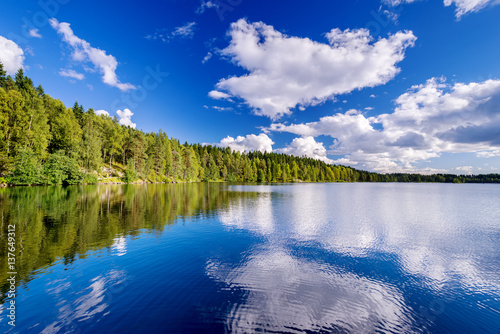 Canvas Prints Mountains Forest lake on cloudy summer day