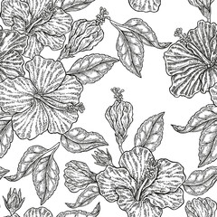 FototapetaVintage hibiscus flowers. Vector seamless pattern. Illustration for fabrics, gift packaging