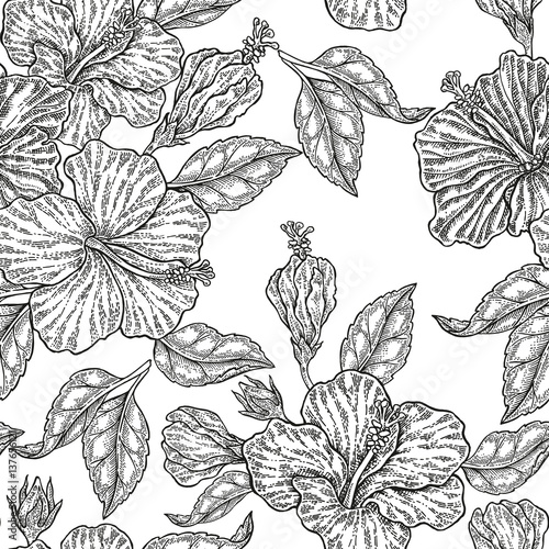 Vintage hibiscus flowers. Vector seamless pattern. Illustration for fabrics, gift packaging - 137656121
