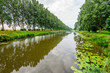 Rows of trees on the banks of a Dutch canal