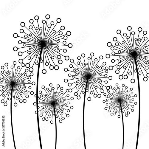 tlo-z-dekoracyjnymi-kwiatami-dandelions