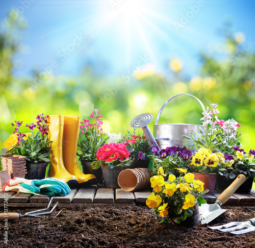 Fotobehang Tuin Gardening - Equipment For Gardener With Flowerpots