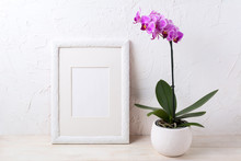 White Frame Mockup With Purple...