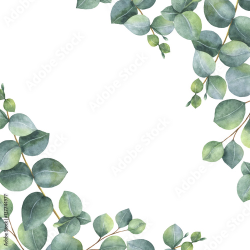 Foto-Vinylboden - Watercolor green floral card with silver dollar eucalyptus leaves and branches isolated on white background. (von elenamedvedeva)