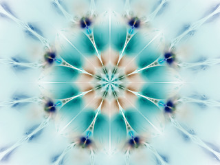 Obraz na Plexi Florystyczny Exotic flower in blue and brown colors. Abstract mandala. Fantasy fractal art. 3D rendering.