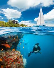 Young Woman Diving And Explori...