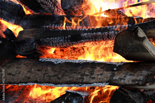 wooden logs burn with a bright flame in the fire