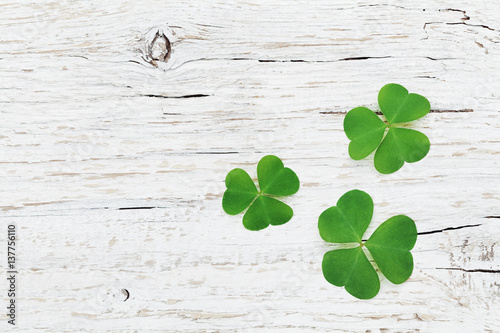 Saint Patricks Day background with green shamrock on wooden texture top view.
