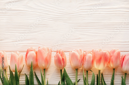 pink-tulips-on-white-rustic-wooden